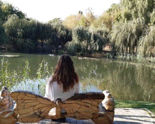 ראיית העולם דרך רומניה